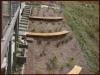 residential garden - steep block 2 of 2
